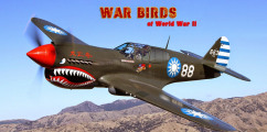 Download WarBirds World War II Combat Aviation-CODEX Full Crack
